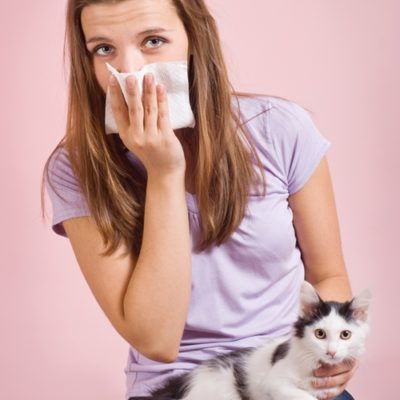 Spring cleaning and air ionizers can get allergens under control