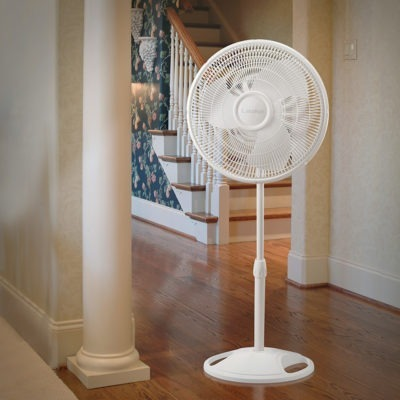 Lasko Lasko 16″ Oscillating Stand Fan With Tilt-Back Model 2520 in Hallway