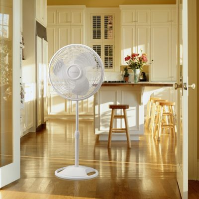 Lasko 2520 Pedestal Fan in Kitchen
