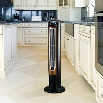 Lasko Wind Curve model T42950