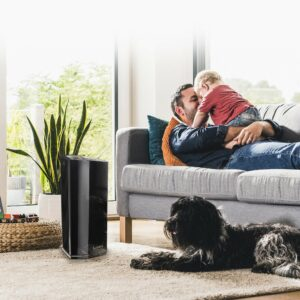Get cleaner, more comfortable air with Lasko's HEPA Filter Air Purifiers